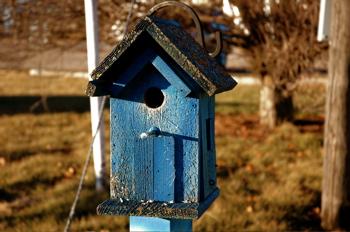 Bluebirdhouse
